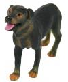 183181802Speelgoed Rottweiler