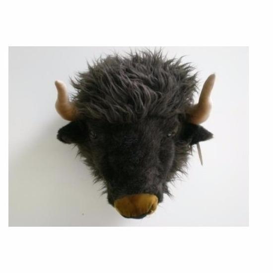 Trofee van een buffel