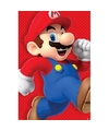 Poster Super Mario Run 61 x 92 cm