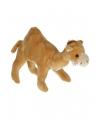 Zachte dromedaris knuffel 22 cm